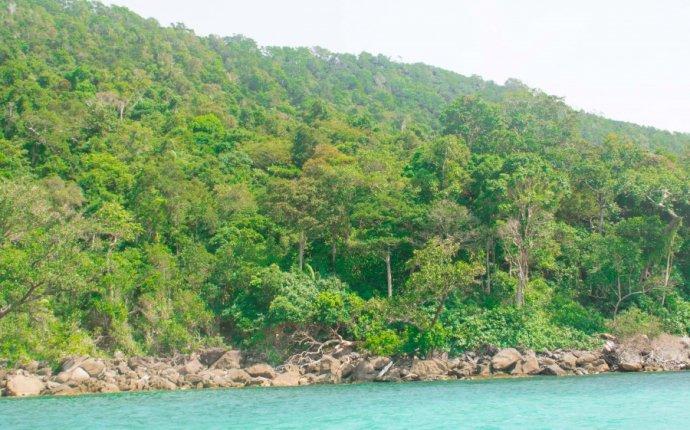Дикий остров Ко Ронг, или остров, где никто не спит - Открыть и