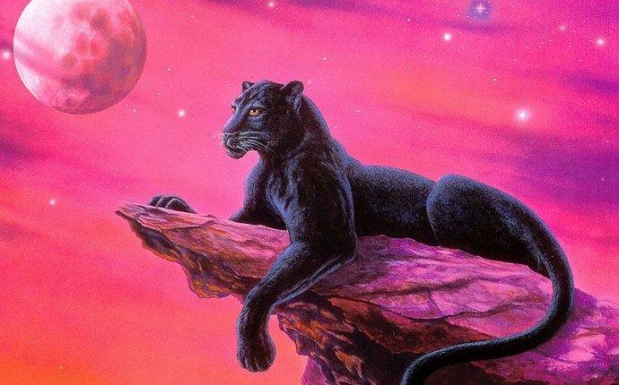 Фотографии и рисунки черной пантеры