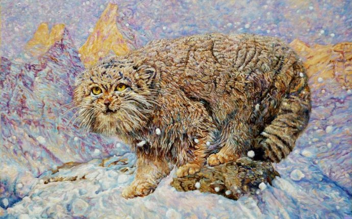 Манул (зима) | Картины художника | Чёрная Лилия Валентиновна