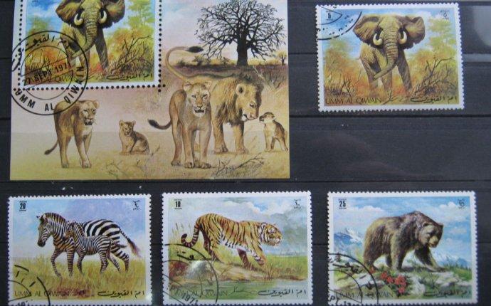 Марки - фауна, Умм-аль-Кувейн, блок и 4 марки, дикие кошки, слон