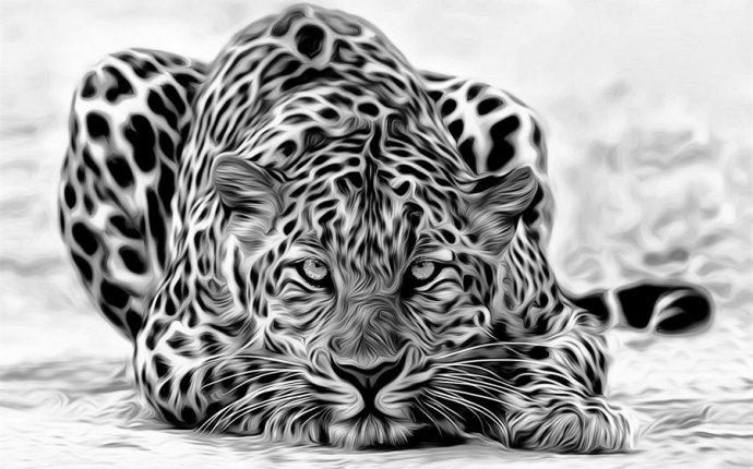 Отзывы и обзоры на Белый Леопард Обои в интернет-магазине AliExpress
