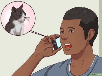 для как избавиться от дикой кошки Craft: отзывы рекомендации
